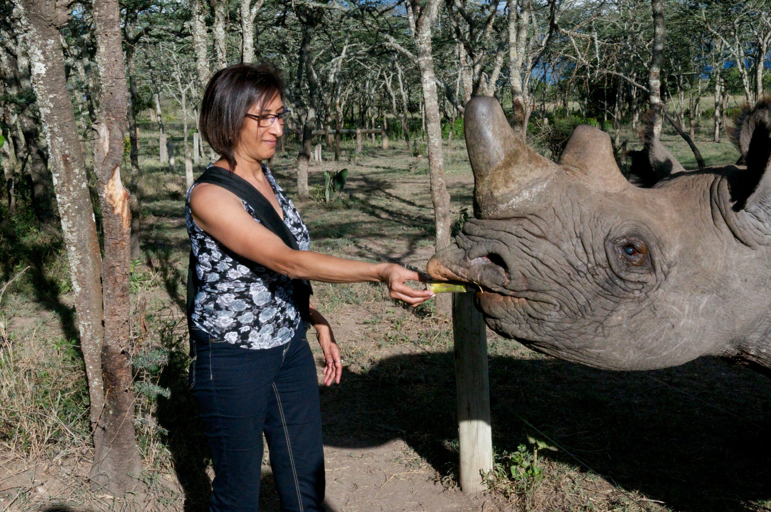 Feeding the Rhino at Ol Pejeta